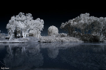 Experience shooting with an infrared camera
