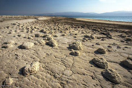 Lumps of salt on the shore of the Dead Sea