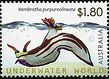 AUSTRALIA 2012 Nembrotha purpureolineata