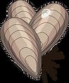 ian-symbol-mussels-2.png