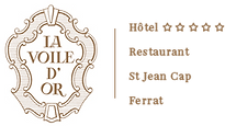 logo_voile d'or.png