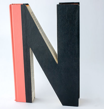 "Alphabet Book Letter ""N"""