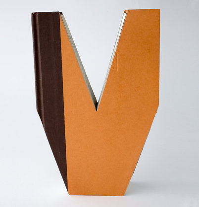 """Alphabet  Book  Letter  """"V"""""""