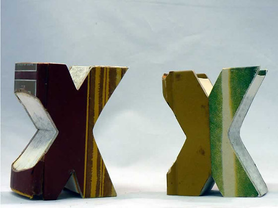"Alphabet Mini Book Letter ""X"""