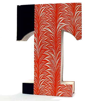 "Alphabet Book Letter ""T"""