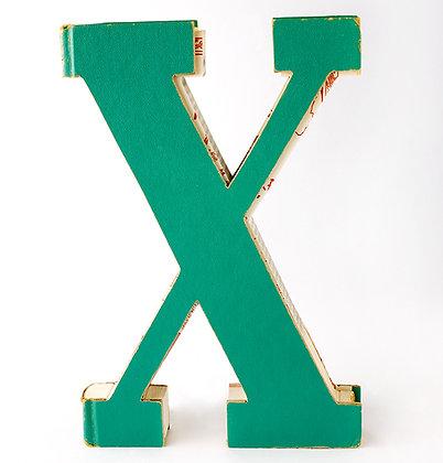 "Alphabet Book Letter ""X"""