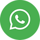 WhatsApp ICONE-01.png