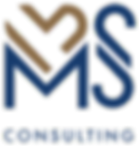 msconsulting logo.png