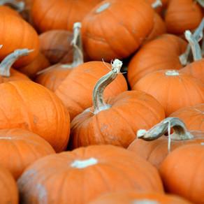 October Offer: Pumpkin Spice