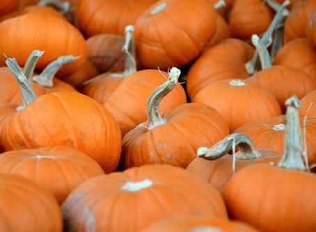 Sunnah Foods: The Great Pumpkin