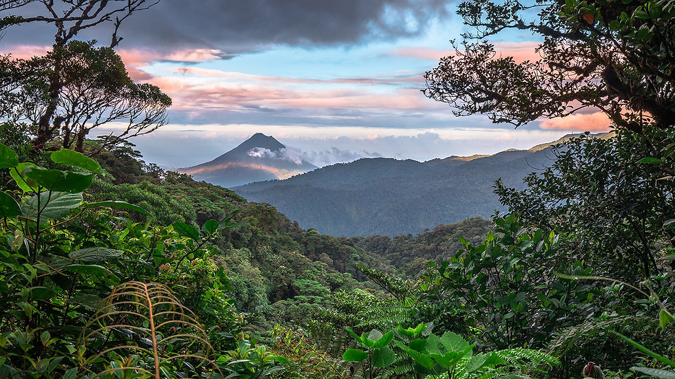 75625_study_abroad_caribbean_costa_rica_monteverde_open_campus_gettyimages-1136250609_0_0.