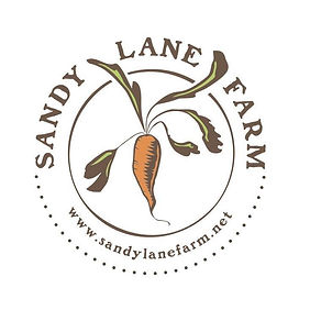 Sandy Lane.jpg