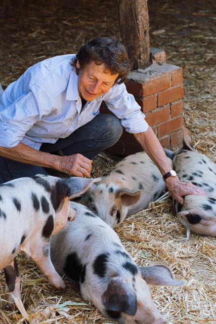 Sandy Lane Farm   (C) Photo by Mark Lord Photography