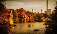 03 2019 EMMS - AUTUMN AT CENTRAL PARK BO
