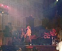 T Rex Newcastle 06.jpg