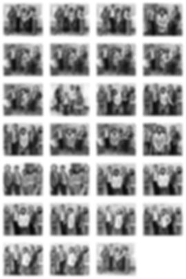 dandy-promo-trex montage.jpg