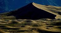 2016 HOLT - The Desert by Moonlight.jpg