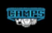 AI Camps Logo-01.png