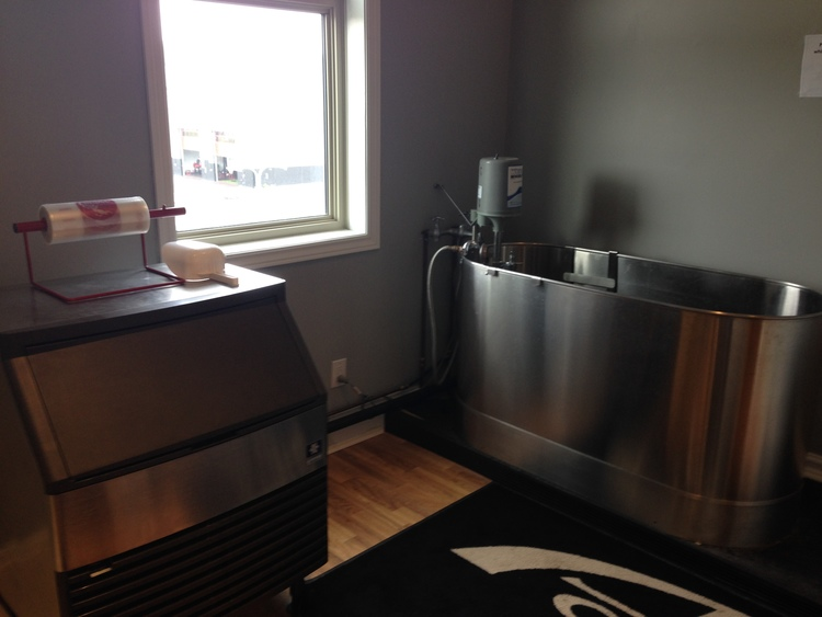 Ice Machine and Hot/Cold Bath