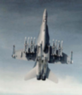Hornet with Missiles