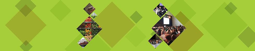 MAA Web cover image (2500 x 500px) (1).j