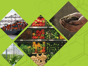 Connecting Agrifood Buyers, Producers and Value Chain Enablers