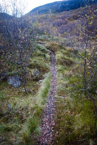 Fjøs ble hytte i Røldal-52.jpg