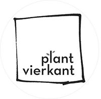plant vierkant 2_bewerkt.png
