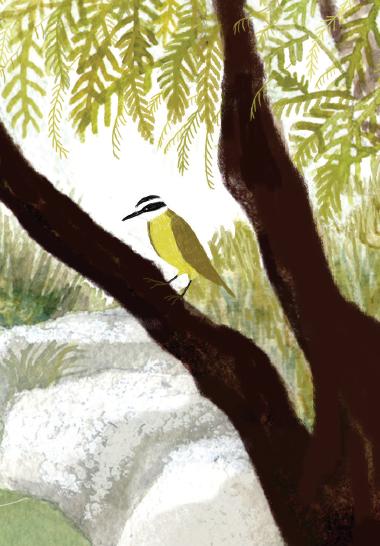 Ilustración de Carolina Romano para el libro Las Súper 8: Un misterioso comienzo