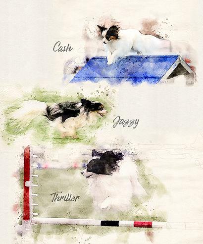 BG-Watercolor.jpg
