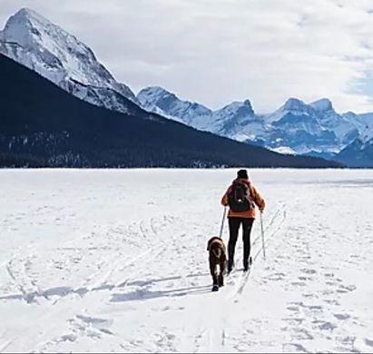 sortie ski de fond mars 2020.jpeg