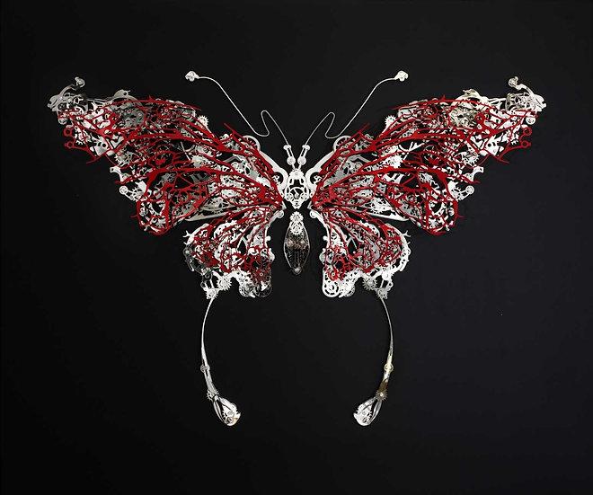 Butterfly 7/8