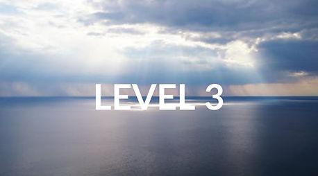 LEVEL 3_edited.jpg