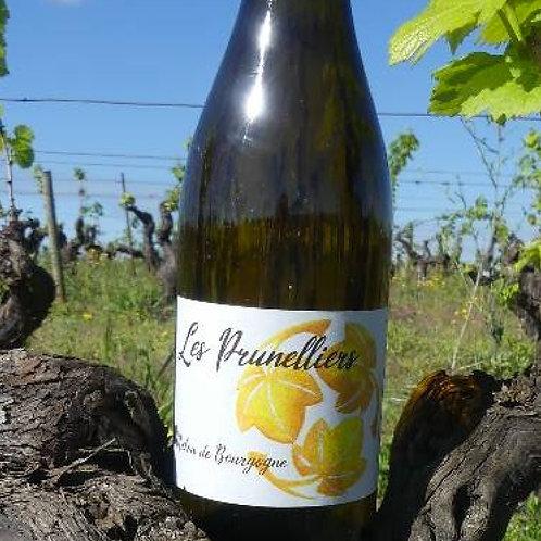 Les Prunelliers 2018, Les Vins Jardinés (Yoann Gillot)