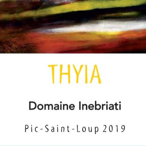 Thyia, 2019 Domaine Inebriati (Victor Beau)