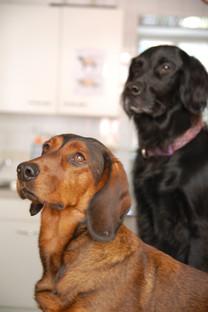 Soffi und Ina