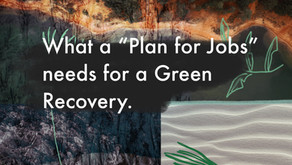 What a 'Plan for Jobs' needs for a green recovery