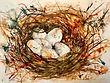 Les oeufs dans leur nid
