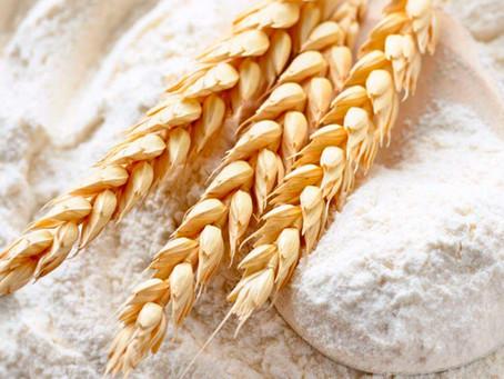 LAS PROPIEDADES NUTRITIVAS QUE NO CONOCÍAS DEL TRIGO