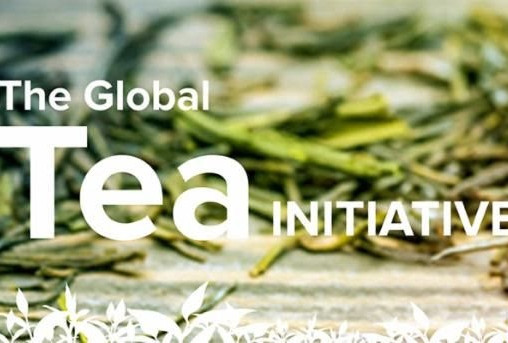 Tiger Update: We're invited! Annual Colloquium for the Global Tea Initiative Featuring Lisa See