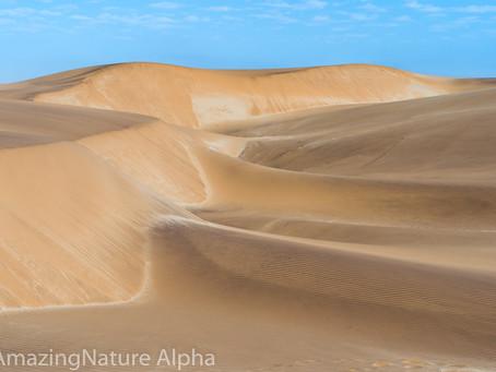 Namibia SELF DRIVE TOUR Tag 4 - Namib Wüste und Seebären