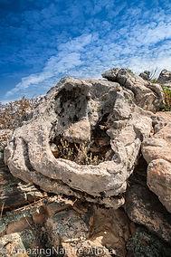 Sardinien-4.jpg