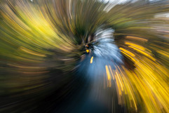 Herbst Strudel