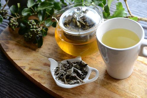 セージと緑茶のハーブティ