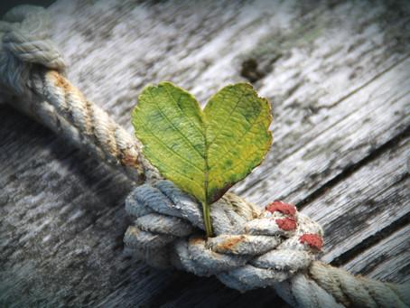 Cultiver la gratitude pour améliorer son humeur