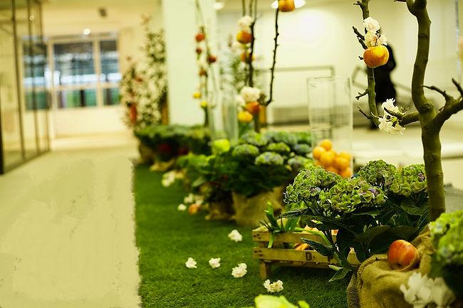Jardin éphémère fruits légumes