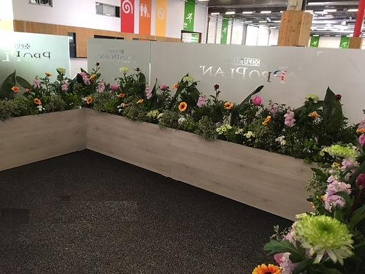 fleurs pour expositions, salons