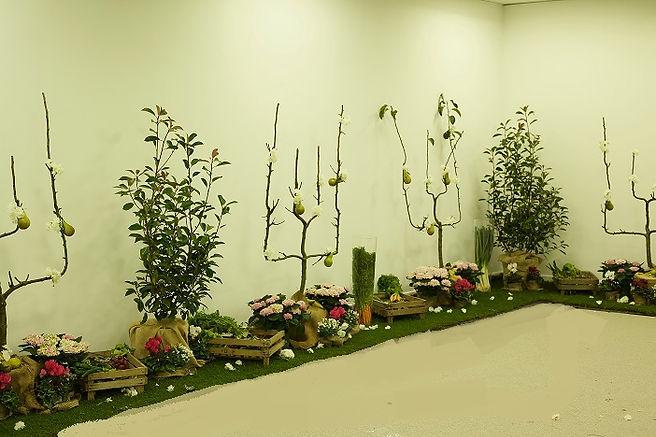 Inauguration jardin fruits