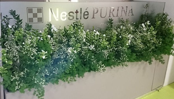 location de plantes dans menuiseries