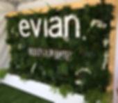 mur végétalisé, mur végétalisé en loation,mur végétalisé naturel, mur végétaliséartificiel,mur végétalisé stabilisé,